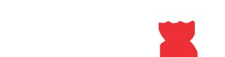 gruppo-contec-pronext-logo